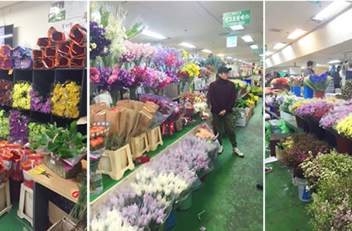 Outstanding Dalat Hasfarm flowers at Seoul Wholesale flowers market