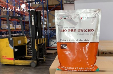 First delivery of Bio Pro Trichoderma to Vinh Thanh Trade Co LTD